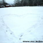 Bor sneg 3