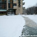 Bor sneg 5