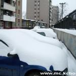 Bor sneg 7