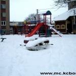 Bor sneg 8