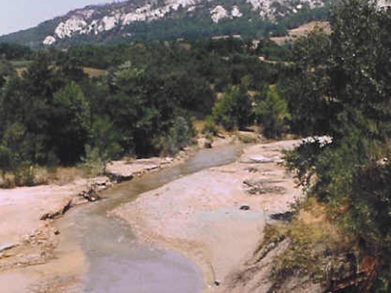 Borska reka