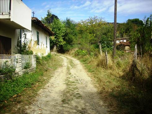 Sokak Cvetkovića…