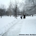Bor sneg 1