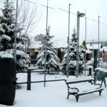 Bor sneg