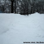 Bor sneg 2
