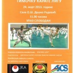 Timocka karate liga
