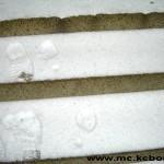 crni sneg 2