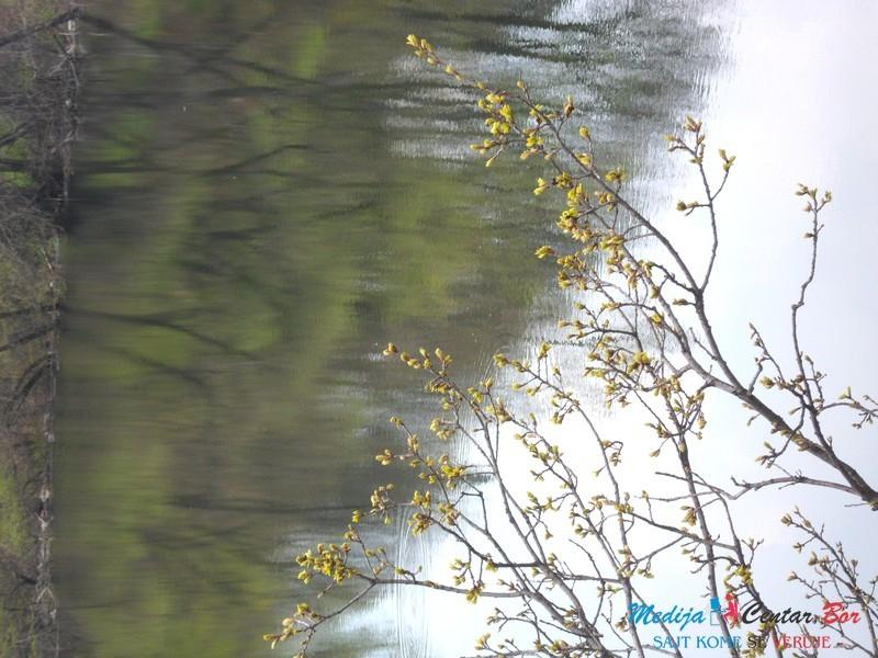 April na Borskom jezeru i u Brestovačkoj banji