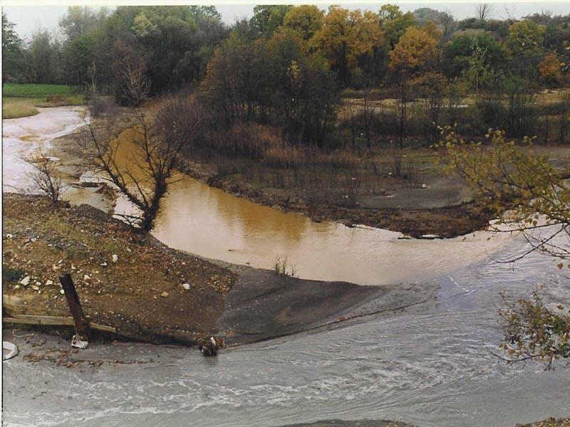 Ušće Borske reke u Kriveljsku