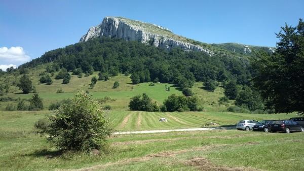 Početak ekološke kataklizme na planini Stol